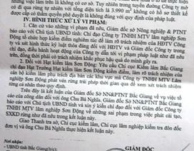 Vụ công ty lâm nghiệp phá rừng tại Bắc Giang: Sở Nông nghiệp chuyển Sở Nội vụ xử lý