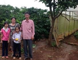 Hai bản án và nỗi oan của một gia đình
