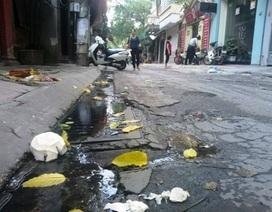 """Người dân và chính quyền cùng đề xuất nâng cấp hệ thống thoát nước, """"giải cứu"""" di tích quốc gia"""