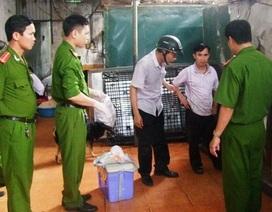 Phát hiện 2,5 tấn bì lợn được mua từ 4 tháng trước