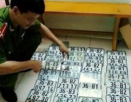 Bắt băng nhóm gây ra hơn 50 vụ trộm cắp, làm giấy tờ giả