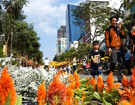 Hơn 1 triệu lượt khách tham quan đường hoa Tết Ất Mùi