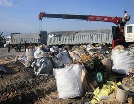 Bắt quả tang 3 tài xế đổ trộm 25 tấn chất thải độc hại