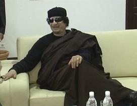 NATO giúp phe nổi dậy truy tìm đại tá Gadhafi?