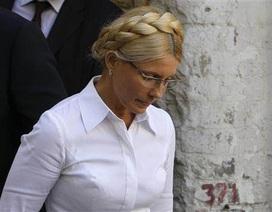Cựu Thủ tướng Ukraine Yulia Tymoshenko bị bắt giam