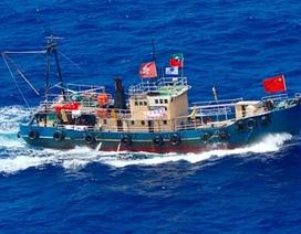 Nhật bắt giữ 14 nhà hoạt động Trung Quốc trên đảo tranh chấp