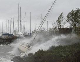 Miền đông nước Mỹ tê liệt vì bão Sandy