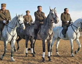 """""""Lãnh đạo Triều Tiên sa thải bộ trưởng quốc phòng"""""""