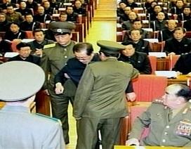 """""""Chó săn xé xác chú dượng Kim Jong-un"""" là chuyện châm biếm từ blog"""