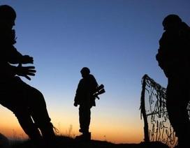 Nato cảnh báo quân Nga ở biên giới Ukraine
