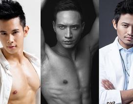 Những mỹ nam của showbiz Việt