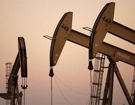 Giá dầu thô tiếp tục giảm mạnh