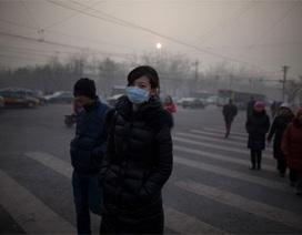 Trở thành tỷ phú đô-la nhờ... ô nhiễm môi trường