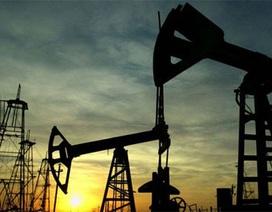 Tăng liên tục 5 phiên, giá dầu cao nhất từ đầu năm