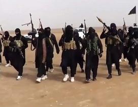Áo kết án tù 9 người Hồi giáo đầu quân cho IS
