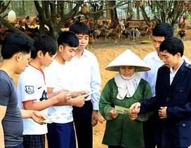 Vẫn phát hiện gà lậu ồ ạt vào Việt Nam