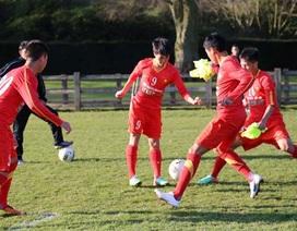 U19 Việt Nam tự tin đối đầu với liên minh học viện JMG Bỉ - Ghana