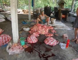 Kinh hoàng lò nấu mỡ động vật
