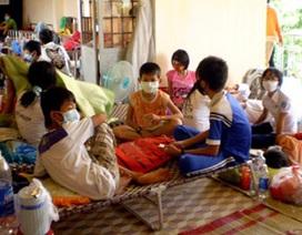 70% số ca cúm là do virus H1N1