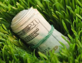 Đồng USD tăng giá không ngừng