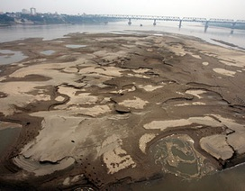 """Sông Hồng cạn """"trơ đáy"""", Bắc Bộ đối mặt hạn hán"""