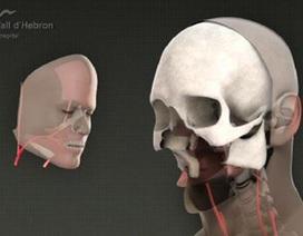 Ca ghép mặt toàn diện đầu tiên trên thế giới