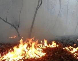 Cháy rừng đe dọa căn cứ quân sự Mátxcơva