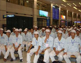 Trên 55 nghìn lao động Việt đã sang Hàn Quốc