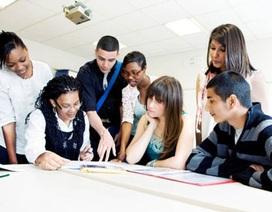 Nhà tuyển dụng cần gì ở các ứng viên?