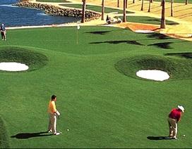 Thủ tướng chỉ đạo lập đoàn kiểm tra quy hoạch sân golf