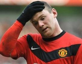 "Ferguson: ""Rooney sẽ trở lại sau 3 tuần"""