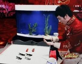 Trung Quốc tranh cãi vì ảo thuật cá vàng