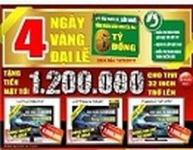 4 ngày vàng Đại lễ tại Việt Long