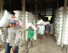 Kinh tế Việt Nam có lý do để lạc quan