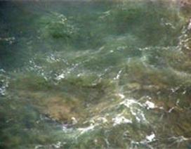 Vết dầu loang bí ẩn bắt đầu tấn công Nam bộ