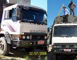 """Những chiếc xe tải dân sự mang """"biển đỏ"""""""