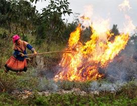 Liên tiếp 4 vụ cháy rừng ở Lào Cai