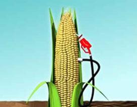 Ethanol - Những điều nên biết