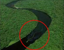 Rắn khổng lồ xuất hiện ở Malaysia?