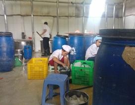 Hà Nội: Ớn lạnh hình ảnh bên trong khu sản xuất sữa tươi