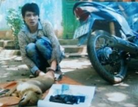 Trộm chó bị đánh chết ngày càng nhiều