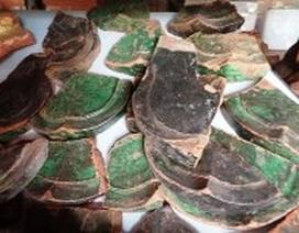 Nhiều dấu tích, di vật cổ ở Thành nhà Hồ vừa được phát hiện