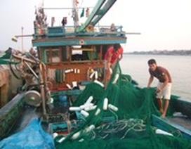 Lắp đặt 90 máy định vị vệ tinh cho tàu cá