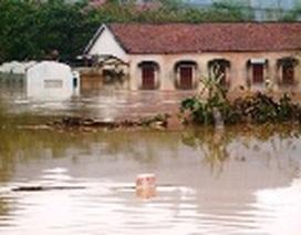 Quảng Bình: Ngành Giáo dục thiệt hại gần 260 tỉ đồng do bão lụt