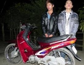 Bắt hai đối tượng cướp xe máy trên đường đi tiêu thụ