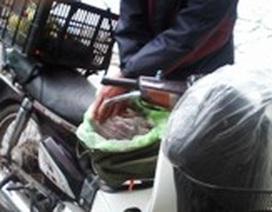 Xử phạt cán bộ Y tế vận chuyển thịt thú rừng trái phép