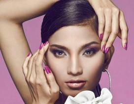 Trương Thị May xin cấp phép dự thi Hoa hậu Hoàn vũ 2013