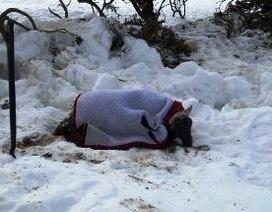 Bị chôn vùi trong tuyết 11 ngày vẫn sống