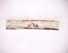Tác phẩm nghệ thuật trên tóc nhỏ hơn tế bào máu