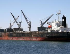 Việt Nam tìm kiếm 19 thuyền viên tàu nước ngoài bị chìm trên biển